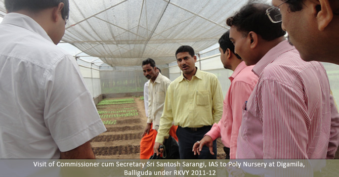 Visit of Commissioner cum Secretary Sri Santosh Sarangi,IAS to Poly Nursery at Digamila, Balliguda under RKVY 2011-12.