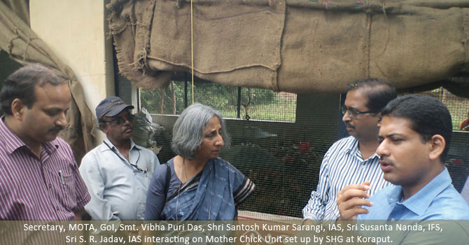 Secretary, MOTA, GoI, Smt. Viva Puri Das, Shri Santosh Kumar Sarangi, IAS, Shri Susanta Nanda, IFS, Shri S.R.Jadav, IAS interacting on Mother Chick Unit set up by SHG at Koraput.