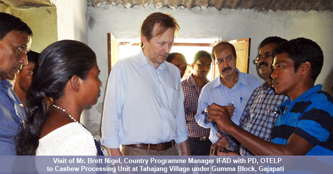 Visit of Mr. Brett Nigel, Country Programme Manager IFAD with PD, OTELP to Cashew Processing Unit at Tahajang village under Gumma Block, Gajapati